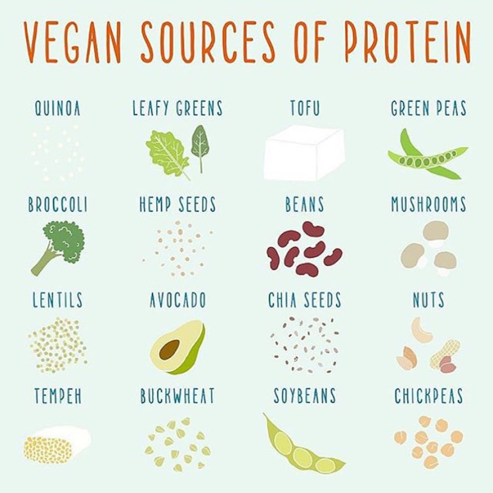 Protein on a low FODMAP Vegan Diet